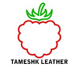 tameshkleatherofficial